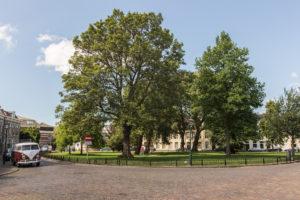 bnb park 150808_InekeEibergen_BnB_V_Wijk_MG_4421_P